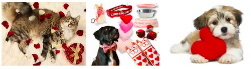 "Screenshot of Bing Image Search Results for ""valentines gift for pets"""
