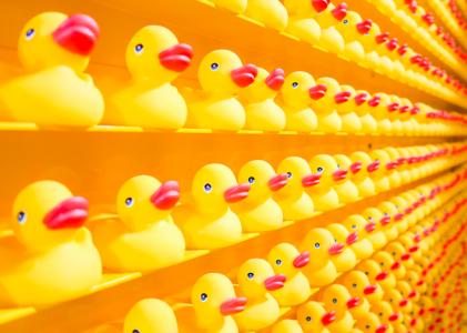 unsplash rubber duckies